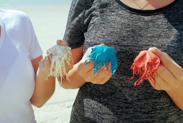 Plastic balloons break down slowly and pose a dager to wildlife.
